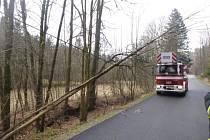 Silný vítr kosil stromy a ničil střechy.