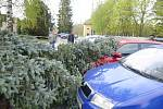 Strom spadl v Dobrušce na auto.