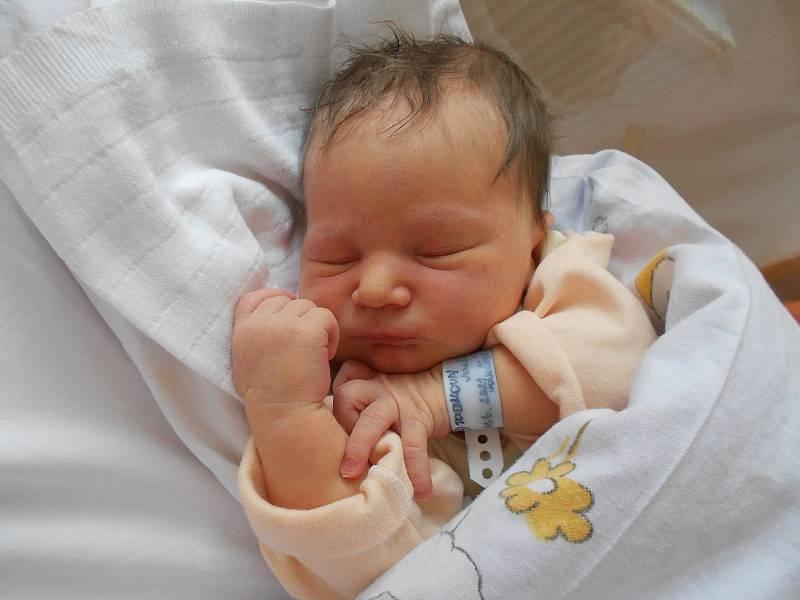 JOSEFÍNA DOUBKOVÁ poprvé vykoukla na svět 11. června v 17.32 hodin. Měřila 50 cm a vážila 3400 g. Velmi potěšila své rodiče Evu a Vítězslava Doubkovy z Nového Hrádku. Tatínek to u porodu zvládl skvěle, byl nejlepší.