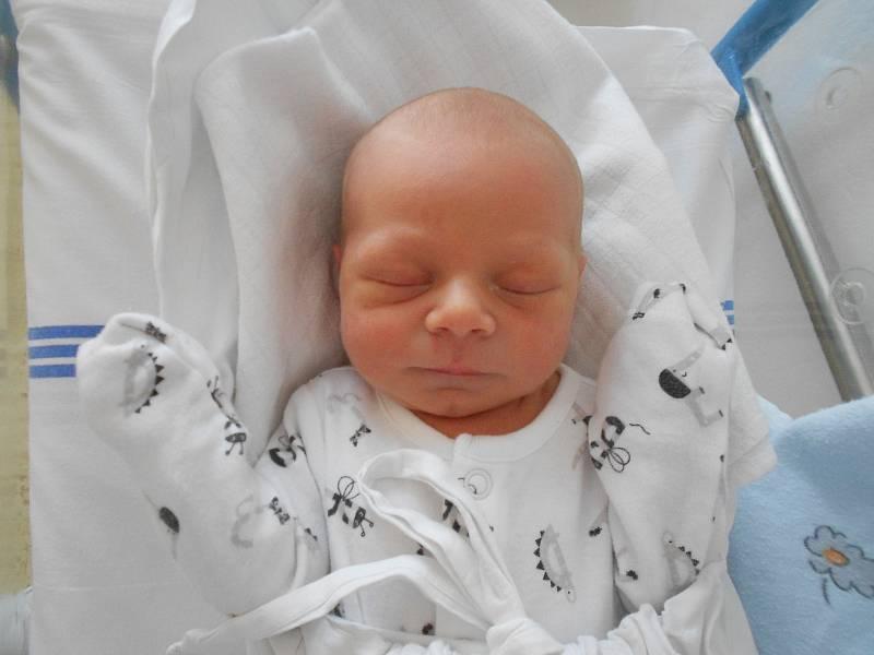 TEODOR KŘEN přišel na svět 11. června v 16.42 hodin. Měřil 49 cm a vážil 2760 g. Největší radost udělal svým rodičům Romaně Schejbalové a Tomáši Křenovi z Holic. Doma se těší sestřička Eleanor. Tatínek byl u porodu velkou oporou a zvládl to na výbornou.