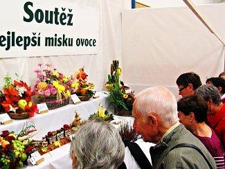Zahrada východních Čech již tradičně v Častolovicích.
