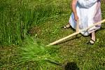 Soutěž v kosení trávy Orlický sekáč v Nebeské Rybné.