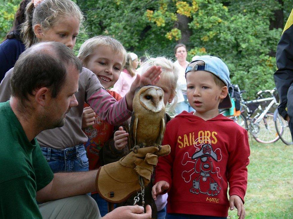 Sokolnický den měl v rychnovském zámeckém parku premiéru a zejména děti nadchl.
