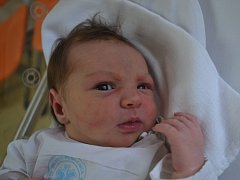 ŠÁRKA KADEŘÁBKOVÁ, tak pojmenovali svou druhorozenou dceru manželé Denisa a Martin Kadeřábkovi ze Skuhrova nad Bělou. Holčička se narodila 23. října ve 14:11 s váhou 3440 g a délkou 51 cm. Tatínek byl u porodu oporou. Doma se těšila Barborka (3,5 roku).