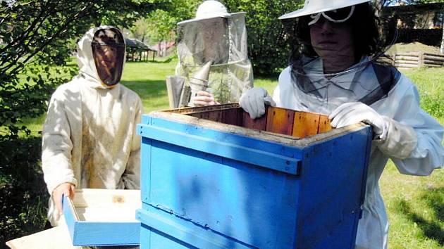 Děti z dětského domova se pustily do chovu včel
