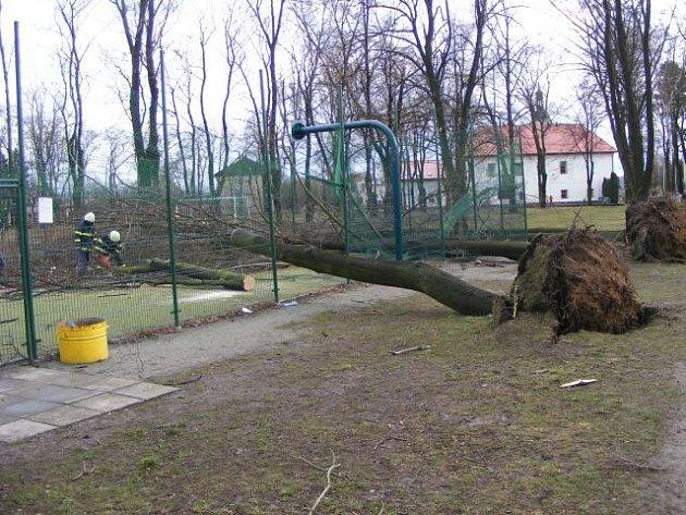 Častolovičtí hasiči prováděli odklízení spadlých stromů v areálu sokolské zahrady.