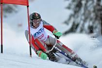 Deštné v Orlických horách hostilo mistrovství České republiky v jízdě na skibobech.