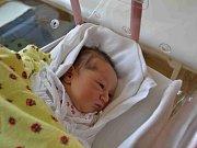 TEREZKA HANCOVÁ se narodila rodičům Ivaně Musilové a Lukáši Hancovi z Polánek nad Dědinou  12. dubna ve 20:07. Holčička vážila 3440 gramů a měřila 51 cm. Tatínek to u porodu zvládl a obstál na výbornou.