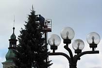 Pracovníci technických služeb zdobí vánoční strom na Starém náměstí v Rychnově nad Kněžnou.