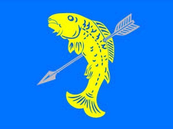 PRAPOR SE VYBÍRAL ZE TŘÍ NÁVRHŮ. Rozhodování bylo těžké, protože byly například připomínky ke druhé hřbetní ploutvi, která častolovickou rybu údajně degraduje na neexistujícího tvora živočišné říše, k barevnému provedení vlajky, tloušťce ryby a podobně