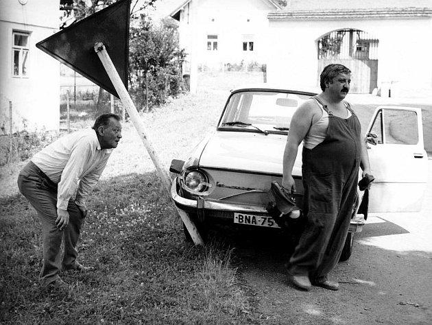 Jedna z jeho nejvýznamnějších rolí - Pávek ve filmu Vesničko má středisková.
