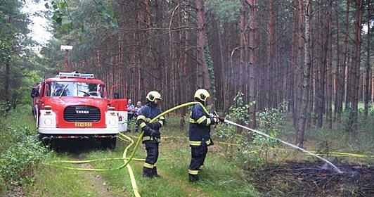 Požár lesního porostu na Týnišťsku.