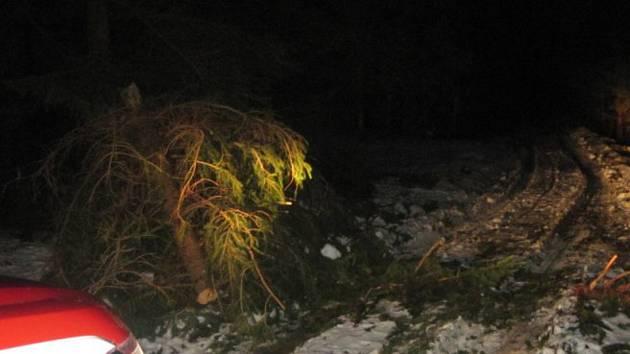 Na Rychnovsku padaly stromy i o víkendu - z Šedivin.