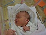 HEDVIKA TRNKOVÁ  se manželům Michaele a Danielovi Trnkovým z Potštejna narodila 24. dubna ve 12:19. Holčička vážila 4340 gramů a měřila 53 cm. Tatínek porod zvládl parádně. Doma na sestřičku čekal Matyáš.