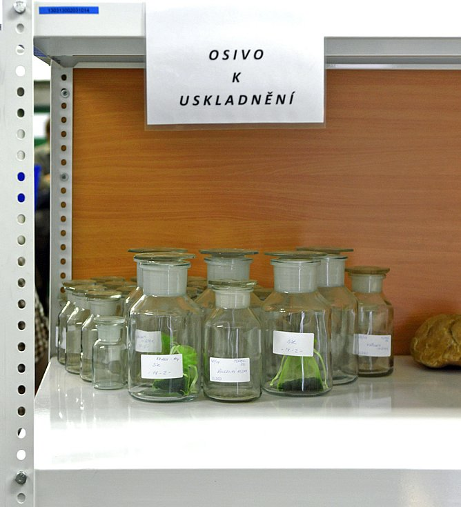 Ze dne otevřených dveří v týnišťském závodu pro odbornou veřejnost, který se tu uskutečnil 10. září.