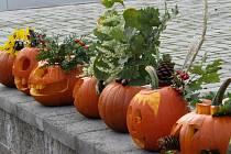 Školka připravila podzimní výstavu z dýní.
