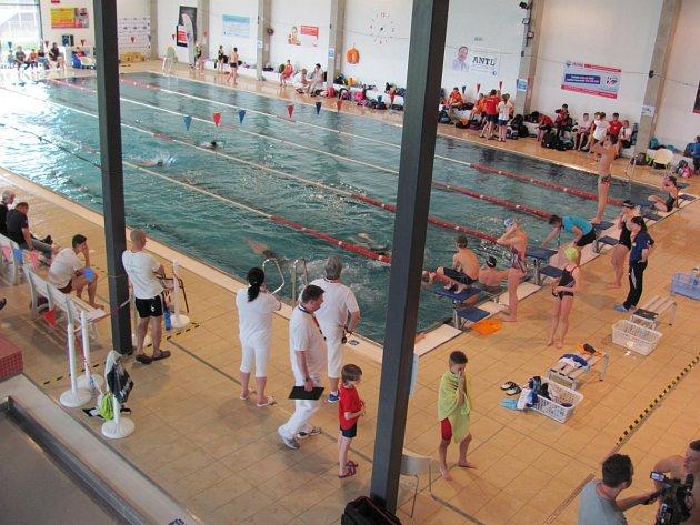 Rychnovský bazén byl o víkendu plný návštěvníků, plavala se zde benefiční štafeta pro babybox a také závody O pohár města Rychnov n. Kn.