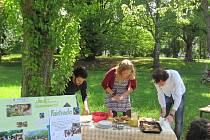 Férová snídaně se konala také v Rychnově.