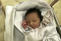 JULIE ČEJCHANOVÁ se narodila 26. prosince v 7:54 mamince Markétě Gajdošové a tatínkovi Davidovi Čejchanovi z Helvíkovic – Houkova. Holčička vážila 2740 gramů. Tatínek byl u porodu a dle slov maminky to bylo fajn.