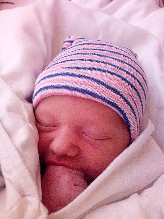 Václav Hloušek ze Semil je na světě! Narodil se 12. dubna 2021 v jilemnické porodnici. Porodní váha byla 3120 g a výška 50 cm.