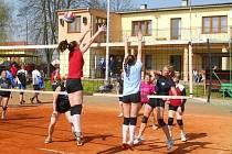 Jubilejního 45. ročníku jarního turnaje v Česticích se zúčastnilo devětatřicet volejbalových družstev, která bojovala o poháry a tradiční vepřové speciality.
