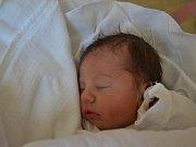 NINA ŘEHÁKOVÁ se narodila 9. května ve 13:39 manželům Marii a Tomášovi Řehákovým z Rychnova nad Kněžnou. Holčička vážila 2 700 gramů. Tatínek byl mamince u porodu velkou oporou.