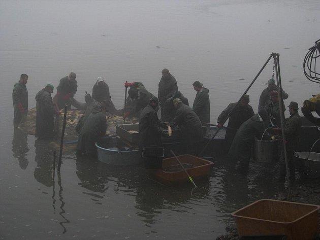 Ve Žďárském rybníku po jeho vypuštění nezůstala ani rybička