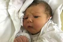 ANTONÍN TICHÝ svým příchodem na svět potěšil maminku Lenku Veselou a tatínka Radoslava Tichého z Máslojed. Chlapeček se narodil 14. října v 8:53 s váhou 3080 gramů a délkou 49 cm. Tatínek byl u porodu fantastický a prý měl více kuráže než maminka.
