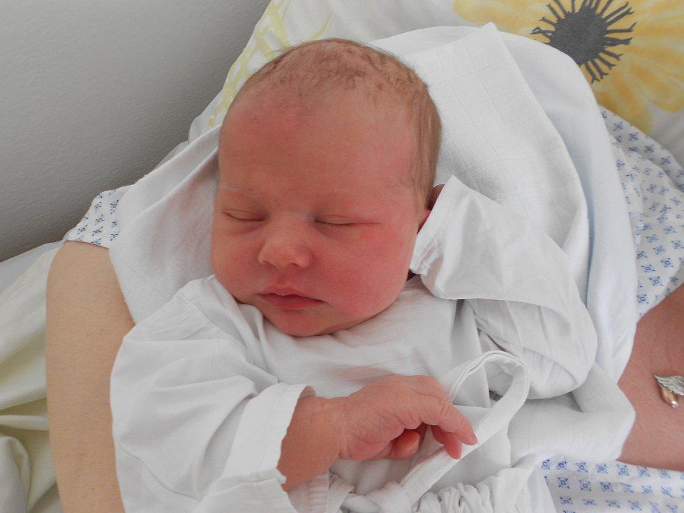 NATÁLIE BOUŠKOVÁ poprvé vykoukla na svět 10. června v 16.15 hodin. Měřila 51 cm a vážila 3720 g. Velkou radost udělala svým rodičům Evě Procházkové a Marku Bouškovi z Pastvin. Tatínek to u porodu zvládl skvěle a byl velkou oporou.