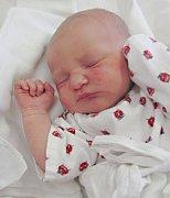 KATEŘINA TRYTOVÁ se narodila 12. března v 17.54 hodin rodičům Veronice Kalouskové a Jaroslavu Trytovi z Doudleb nad Orlicí. Na svět si přinesla 49 centimetrů a 3,28 kilogramů.