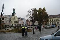 Kácení lip na rychnovském Starém náměstí.