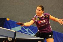 Opora. Ivana Pelcmanová (na snímku) potvrdila pozici jedničky doberského týmu.