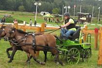 Závody koňských spřežení v Bolehošti-Lipinách