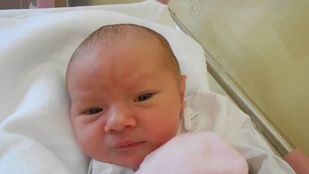Adéla Nováková se narodila 21. června 2019 ve 22.39 hodin s váhou 3 090 g. Radost udělala rodičům Editě a Liborovi Novákovým z Lična i bratrovi Adamovi. Tatínek nechyběl u porodu a vedl si statečně.