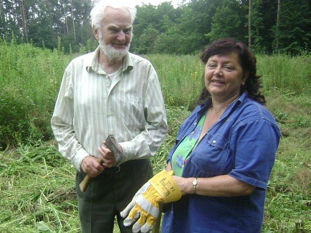 Třiaosmdesátiletý dobrovolník Ludvík Uhlíř společně se starostkou Častolovic Jarmilou Novohradskou při čištění lesa..