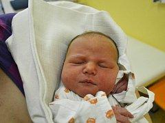 ELLEN VIMEROVÁ se narodila 12. března v 11:06 s váhou 3220 gramů a délkou 48 cm. Z jejího narození se těšila maminka Lenka a tatínek Marek Vimerovi z Vamberka. Tatínek byl u porodu a zvládl ho na výbornou. Doma už se na sestřičku těšili Adélka a Jakub.