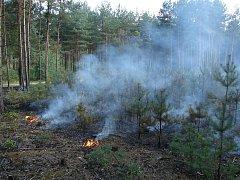 Hasiči likvidovali požár lesa u Rašovic