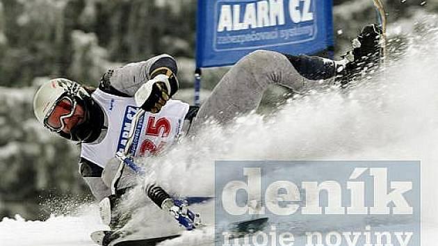 Světový pohár a Evropský pohár juniorů v jízdě na skibobech 2010 v Deštném v Orlických horách.