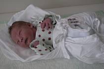 První Rychnováček, Michálek Gajda, se narodil v 8 hodin 41 minut ráno jako prvorozený syn Aleně a Milošovi Gajdovým, kteří bydlí v Rychnově.