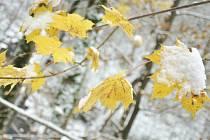 První sníh na Rychnovsku