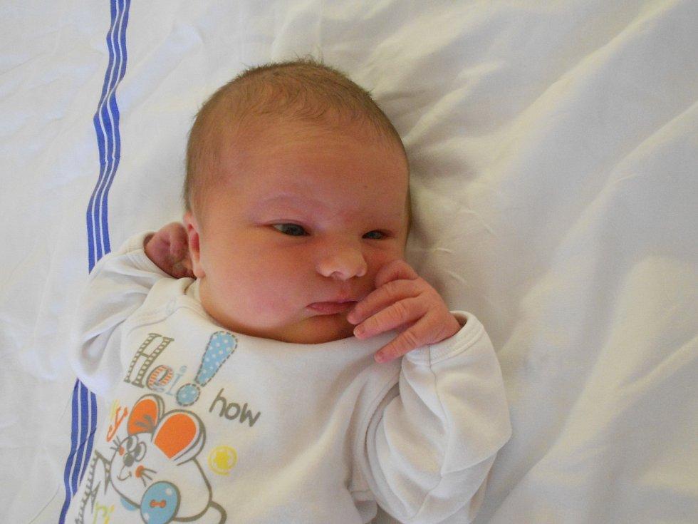 Barbora Levová přišla na svět 4. listopadu 2019 v10.50 hodin. Měřila 51 cm a vážila 4 070 g. Rodiče Jana a Jan zPřepych zní mají obrovskou radost. Tatínek byl u porodu obrovskou oporou.
