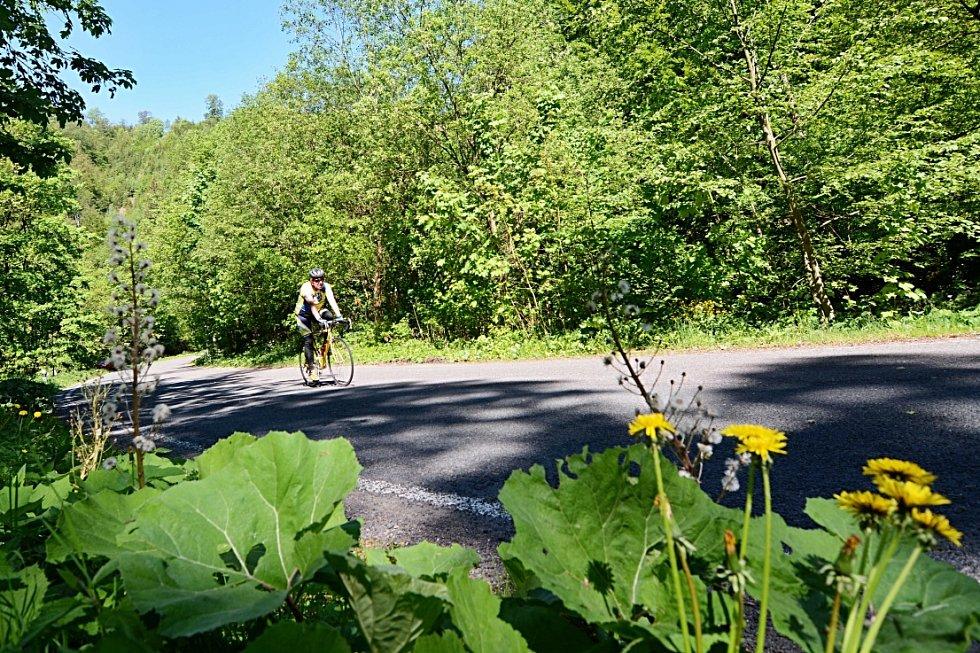 Cyklistický pohár Kvasiny-Luisiono údolí