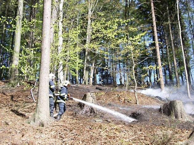 Kunčina Ves - požár lesní hrabanky.