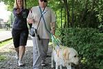 Bílá hůlka a pes nahrazují nevidomým zrak.