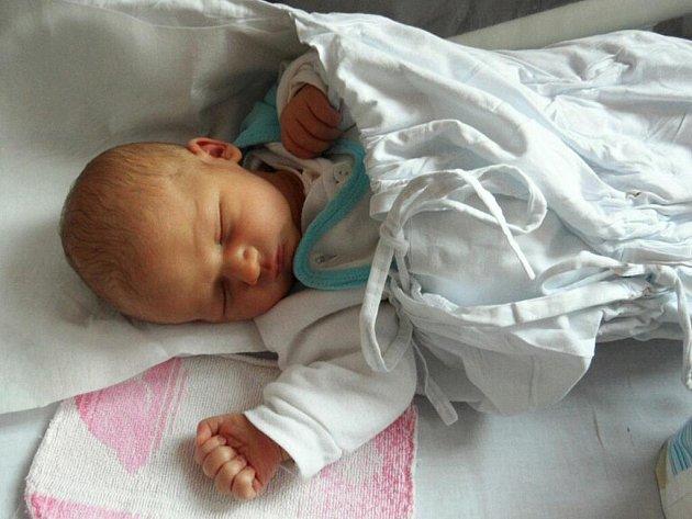 VOJTĚCH ZEIDLER: Rodiče Alena Škodová a Alois Zeidler z Přibyslavi u Nového Města n. M. přivedli v náchodské nemocnici na svět prvorozeného syna Vojtěcha Zeidlera. Vojtěch se narodil 6. února v 7.14 hodin. Po porodu vážil celých 3,39 kg a měřil  49 cm.