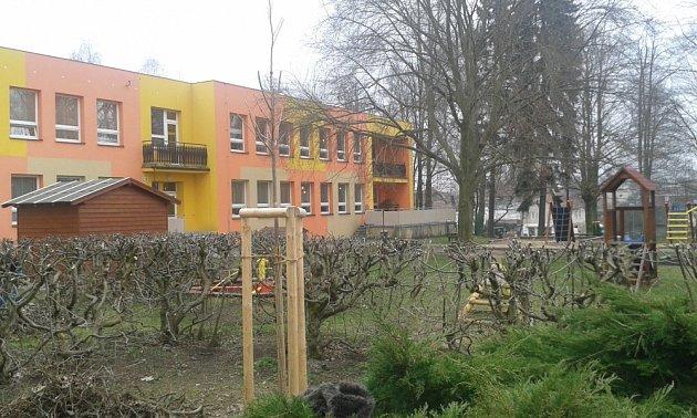 Obnoví městskou zeleň, zkrášlí  i park. Borohrádek se zazelená