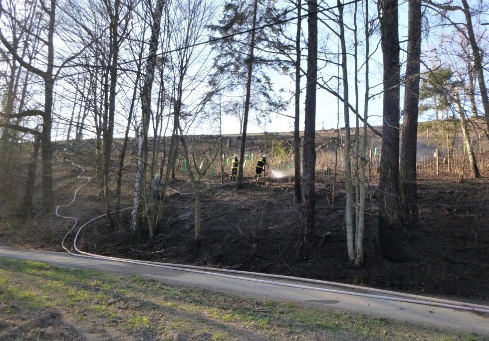 Požár lesního porostu. Ilustrační foto.
