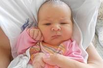 Nikoli Vlad se narodila 8. července 2020 v 02:12 hodin, měřila 52 cm a vážila 3850 gramů. Rodiče se jmenují Daniela Mikhaela Vlad a Mihal Vlad. Rodina bydlí v Borohrádku. Tatínek to zvládl u porodu super.