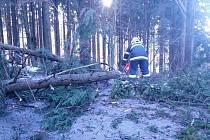 HASIČI ze záchranného sboru v Dobrušce společně s jednotkou sboru dobrovolných hasičů z Olešnice v Orlických horách likvidovali v úterý v podvečer čtyři vzrostlé smrky, které zcela zatarasili komunikaci mezi Sedloňovem a Olešnicí.
