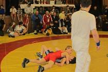 TRADIČNÍ Velké ceny města Borohrádek se zúčastnilo téměř dvě stě mladých zápasníků a zápasnic z Česka a Polska